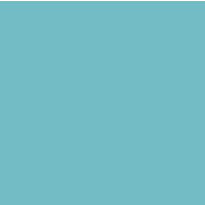 PICTO-Organisations-du-travail-hybride